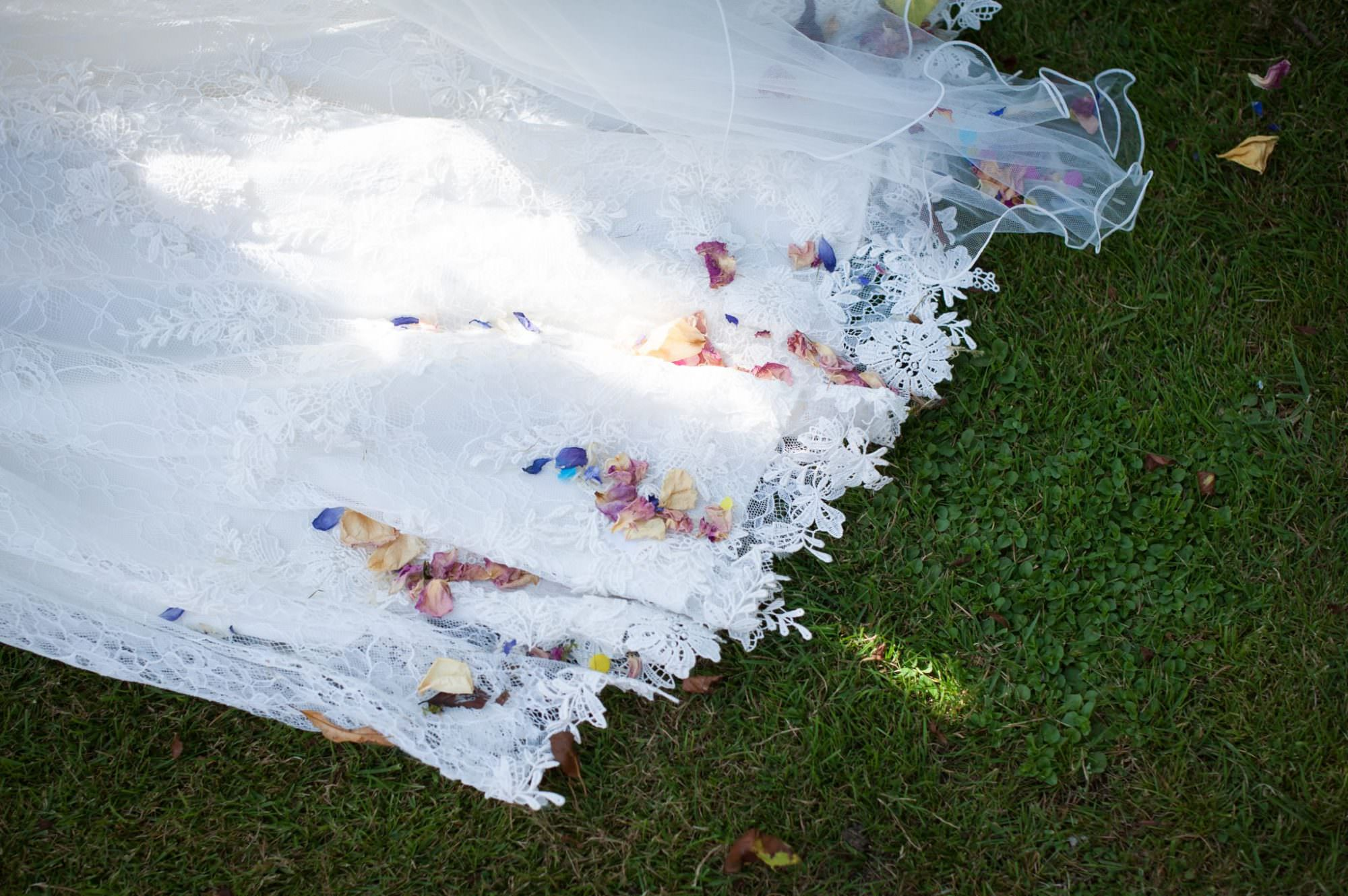 Colourful confetti at Dorset wedding
