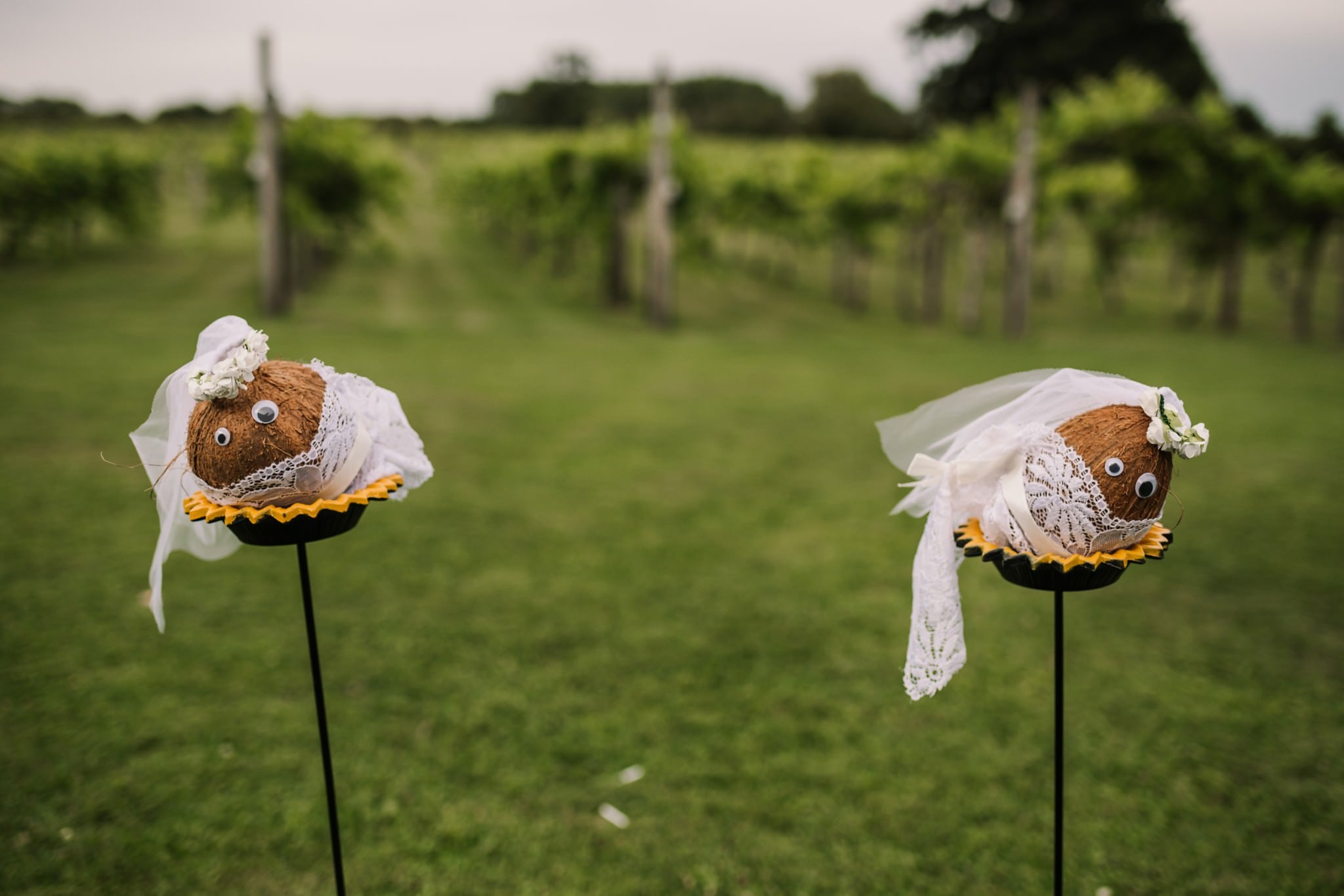 Bride coconut shy at Three Choirs Vineyard wedding