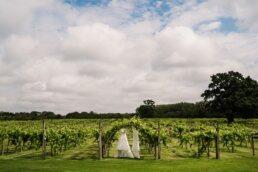 Hampshire photographer at Three Choirs Vineyard wedding