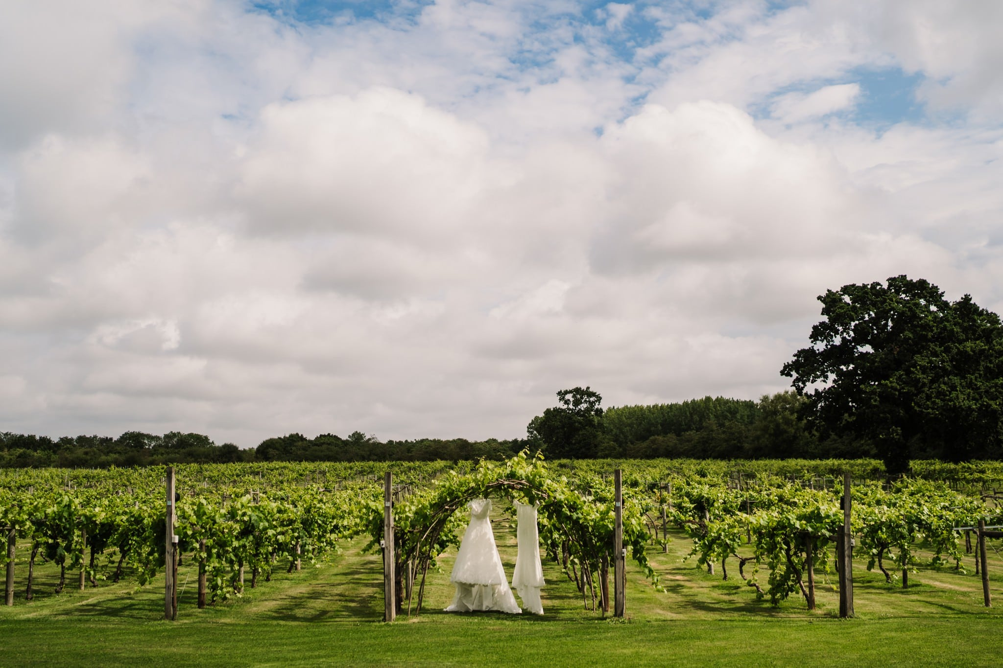 Hampshire photographer at Three Choirs Vineyard wedding